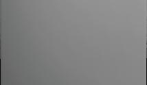BEKO TDFV15315S